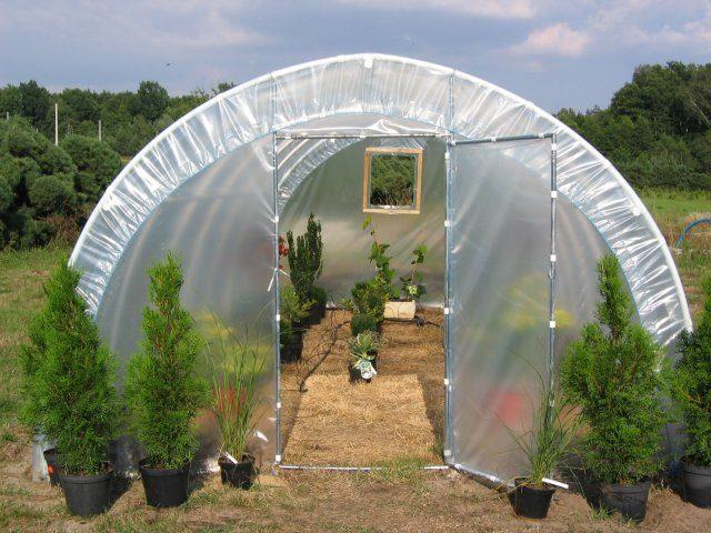 Uprawa roślin w tunelu receptą na zdrowie