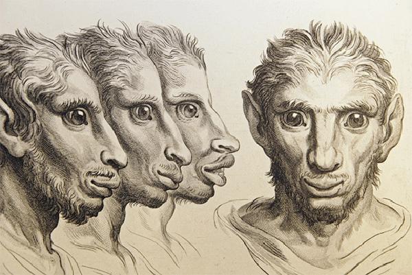 Charles Le Brun evolution