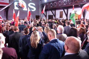 Adam Mazguła: PiS-okupacja