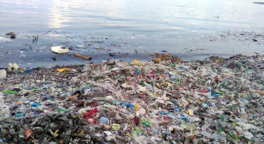 Zabójczy mikroplastik w naszych organizmach