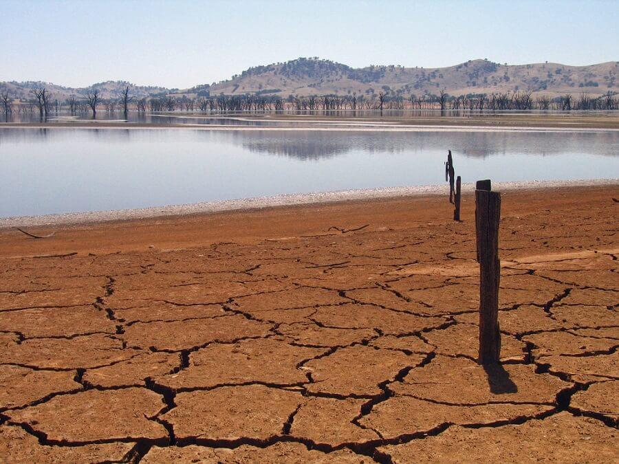 Dzień Długu Ekologicznego
