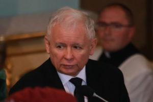 Adam Mazguła: Dyktator dobija demokrację