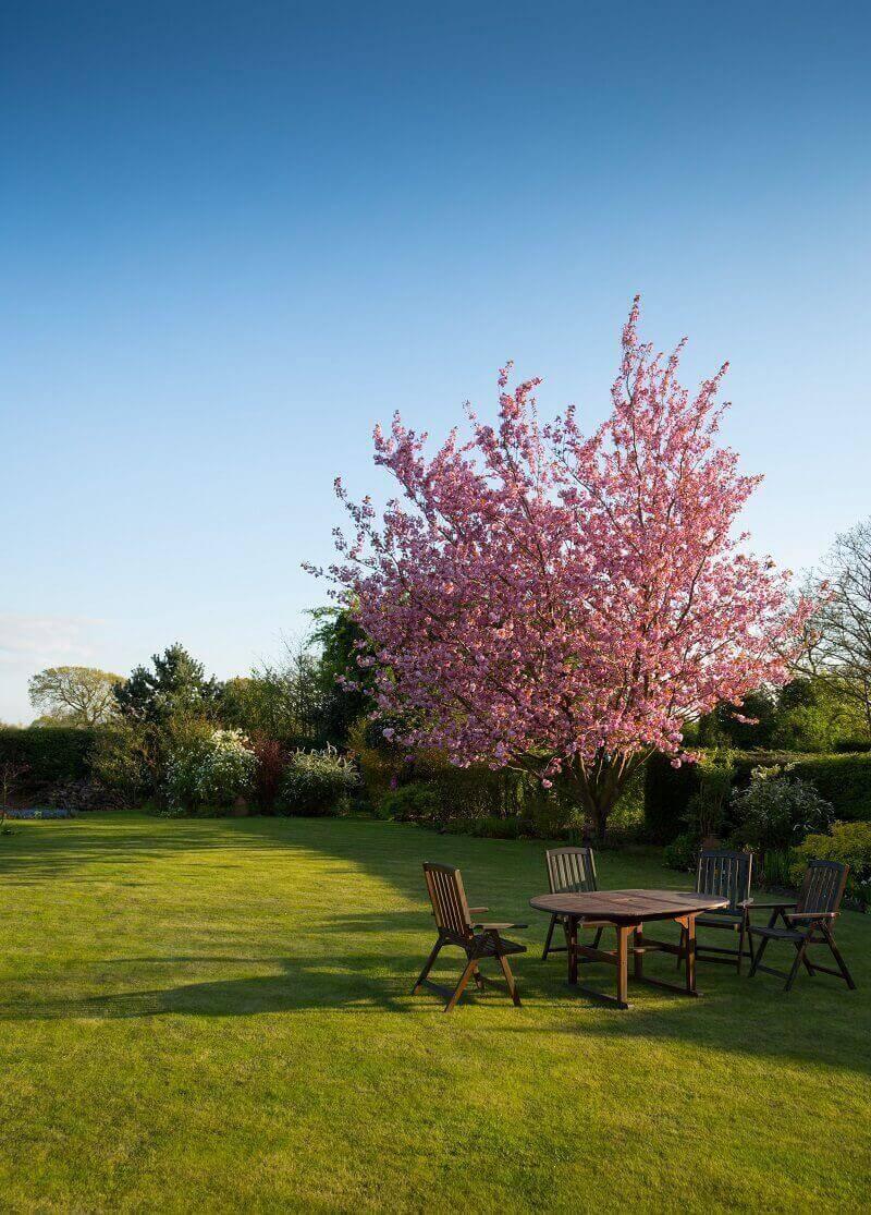 Ogród to miejsce, które może stać się naszą strefą wypoczynku. Zaplanowana z głową przestrzeń, będzie cieszyć oko również naszych najbliższych.