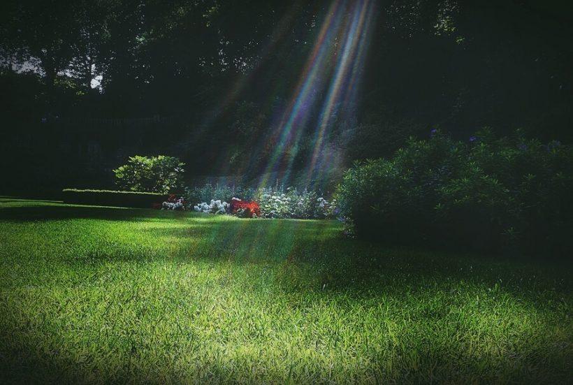 Na co zwrócić uwagę, kupując meble ogrodowe?