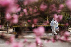 Raport BBC: 5 głównych wniosków, jak sobie poradzić z pandemią