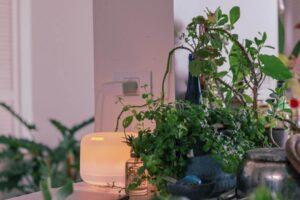 Czy oczyszczacz powietrza likwiduje smog w mieszkaniu?