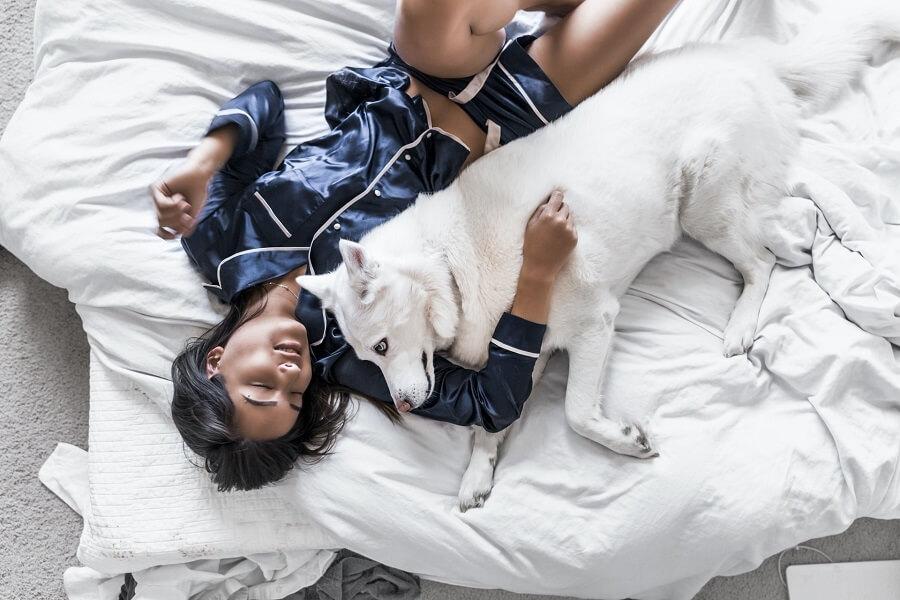 Z wyników badań wynika, że śpiąc ze swoim pupilem śpi im się lepiej, Spanie ze zwierzakiem niesie korzyści takie jak wzmocnione poczucie bezpieczeństwa i większy relaks