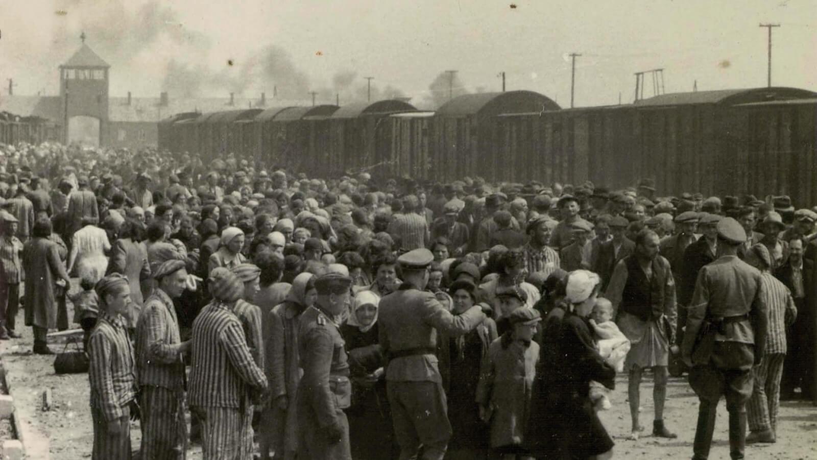 Przeżył Auschwitz: Starych i chorych kierowano na prawo, innych na lewo gdzie zaczęła się procedura odczłowieczenia